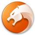 猎豹安全浏览器(猎豹浏览器) V6.5.115.20579 官方便携版