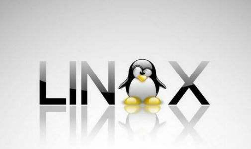 Linux详解