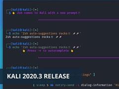 Kali新版正式发布:Kali Linux 2020.3