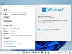 Windows11 Insider Preview 22000.51(CO_RELEASE)下载