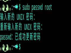 Deepin系统怎么切换到root用户?Deepin系统切换到root用户方法教程